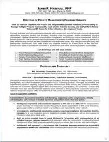 summary statement resume project manager masters program sle cv masters programme