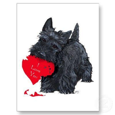 schots terrier valentijn feestdagenkaart scottie dogs