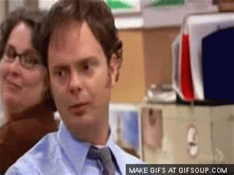 Dwight Gif  Find & Share On Giphy