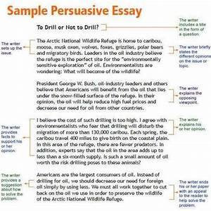 essay ready meals essay writers in uk accounting case study help