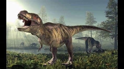 Dinosaurios Extincion Dinosaurios Para Niñosdinosaurios
