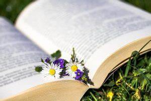Daisy Abrechnung : phytotherapie naturheilpraxis claudia langohr 91154 roth ~ Themetempest.com Abrechnung