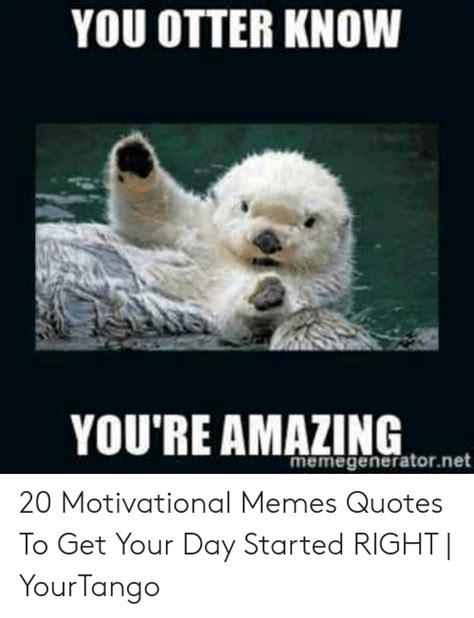 otter  youre amazing memegeneratornet