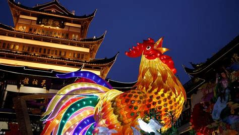 china lights      year   rooster
