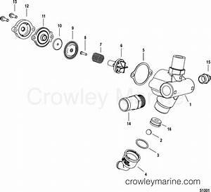 Poppet Valve Mercury Outboard Parts Diagram  Mercury  Auto