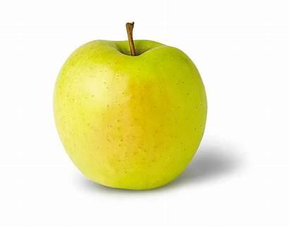 Golden Delicious Apple Sweet Varieties Tart