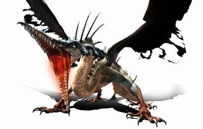 Dragon Sea Nest Wikia Latest Dnsea