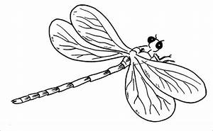 10  Dragonfly Templates  Crafts  U0026 Colouring Pages