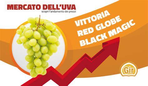 prezzo uva da tavola listino prezzi uva da tavola oggi vittoria 2 50 2 60
