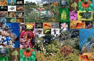 Biodiversity Animals and Plants