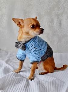 Keep Your Dog Warm With A Crochet Dog Sweater | Crochet ...