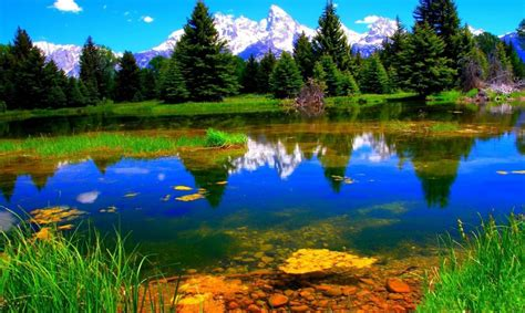 Animated Nature Wallpaper Hd - animation wallpapers widescreen nature wallpapers high
