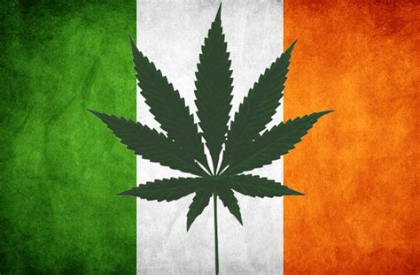 londonweednet top london uk ireland scotland wales weed  spain   home fast