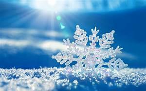 Winter Backgrounds Download Free for Desktop   PixelsTalk.Net