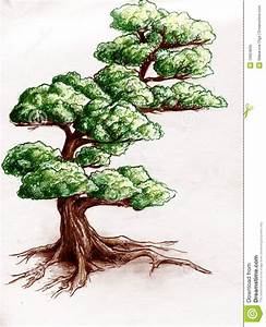 tree drawings color - Google Search | Concentration ideas ...