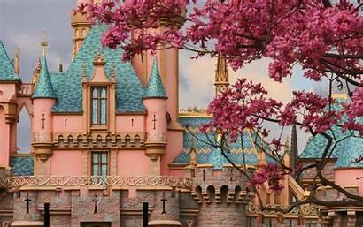 Disneyland Backgrounds Wallpapers Pixelstalk Under