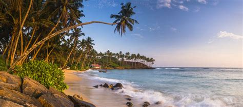 Sri Lanka Travel Photography Highlights Matthew Williams