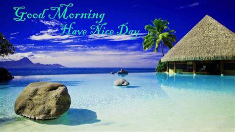 good morning good morning friends   nice day hd