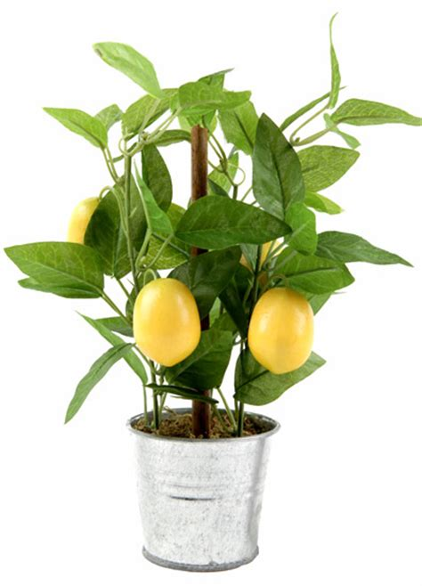 plante artificielle citronnier en pot 4 fruits 26cm vert