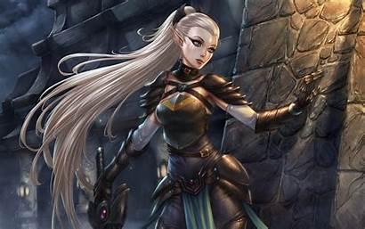 Fantasy Artwork Warrior Elf Female Elven Woman