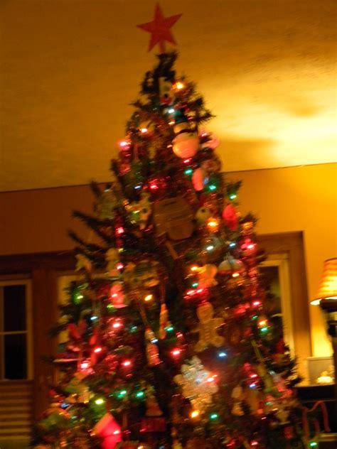 christmas tree farms in nebraska christmas tree farms in nebraska odyssey through nebraska 9319
