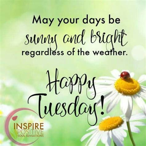 Tuesday Quotes Quotes Happy Tuesday Quotes Sayings