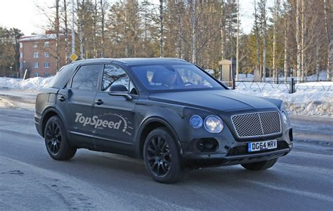 Bentley Bentayga Picture 2016 bentley bentayga picture 618405 car review top