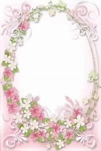 Roses on Pinterest