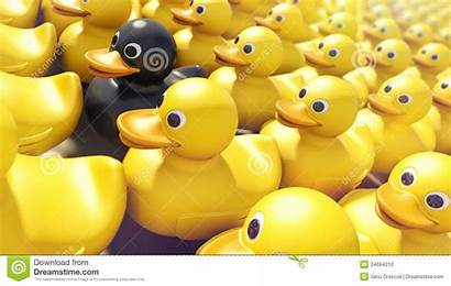 Difference Rubber Ducky Duckies Unique Yellow