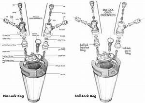 A Visual Comparison Of Ball