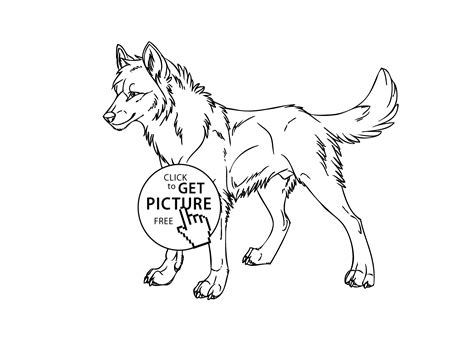 wolf wild animals coloring pages  kids printable