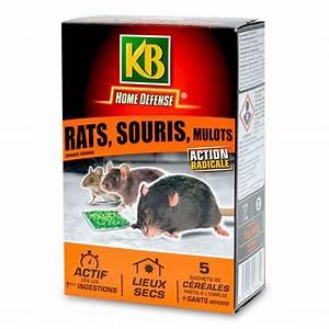 Produit Pour Tuer Les Rats : raticide souricide anti mulots c r ales en sachets pr ts l 39 emploi ~ Voncanada.com Idées de Décoration