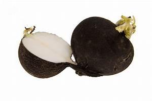 Черная редька чистка печени