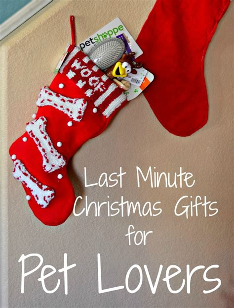 last minute christmas gifts for pet lovers