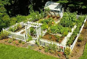 How to grow a vegetable garden from garbage humans are free for Beautiful home vegetable gardens
