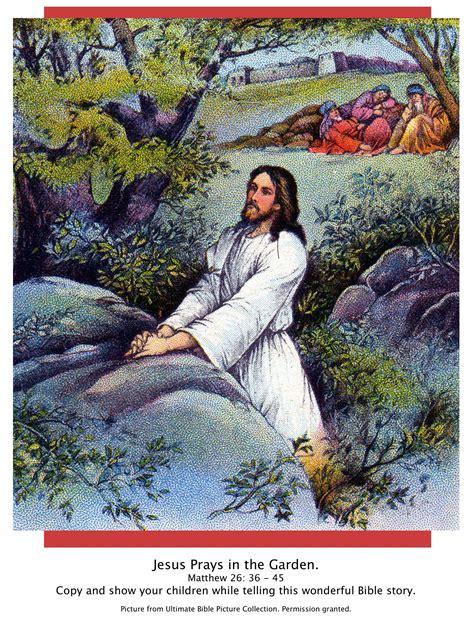 Garden Of Gethsemane Bible bible story pictures jesus in the garden of gethsemane