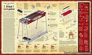 Beautiful Pedal Steel Diagram Poster   The Steel Guitar Forum