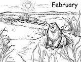 Coloring February Prairie Storms Winter Darcy Groundhog Hog Ground Written sketch template