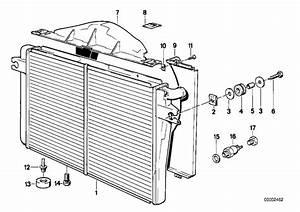 Bmw M5 Drain Plug Radiator  M10  Engine  Cooling  Frame