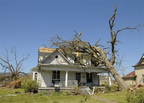 Most Common Types Of Damage Caused To The Home