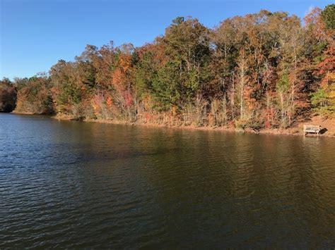 lake view lot  ashville al  sale alabama land agent