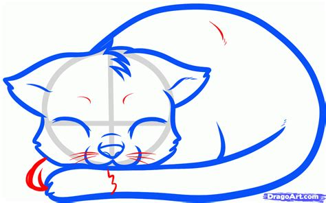 draw  sleeping cat sleeping cat step  step