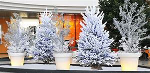 Decoration Noel Exterieur Professionnel Dcoration De
