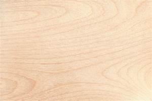 Birkenholz Eigenschaften, Verwendung und Preise