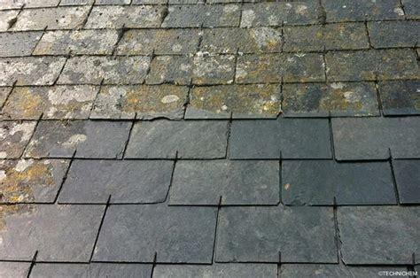 antimousse non corrosif pour toitures terrasses et murs