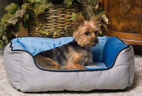 k h lounge sleeper self warming dog bed 16x20 kh3161