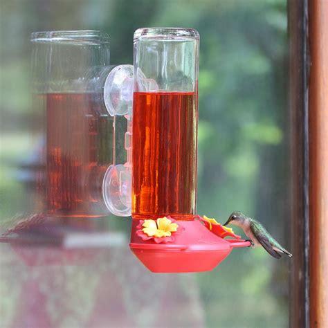 garden song 14 ounce window mount glass hummingbird feeder