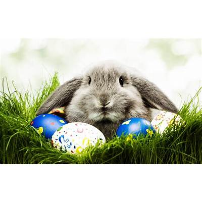 10 Facts About Easter More Interesting Than the Chocolate