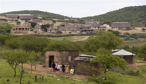 Dogs That Dont Shed by Nkandla Zuma S Best Kept Secret Soon To Be Parliament S
