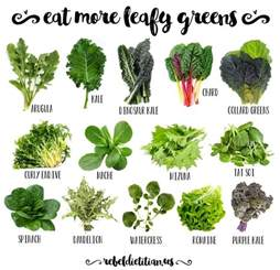 Garden Vegetables Grow Shade